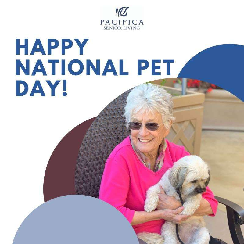 National Pet Day Wishes Unique Image