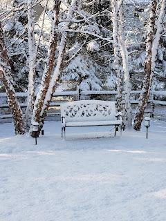 fluffy winter spring white