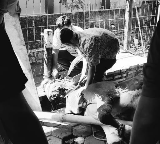 Perayaan Idul Adha di Tengah Pandemi
