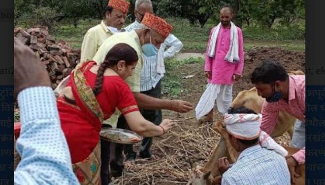 प्रख्यात कर सल्लागार विवेक साले व त्यांच्या कुटुंबियांनी केले ३६ गायींचे दान -NNL