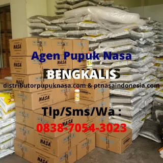 http://www.distributorpupuknasa.com/2020/02/agen-pupuk-nasa-bengkalis_27.html