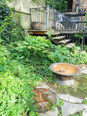 Leslieville Summer Garden Cleanup Before by Paul Jung Gardening Services--a Toronto Gardening Company