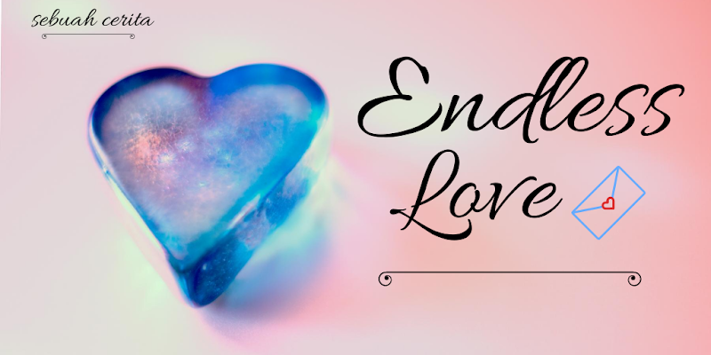 Endless Love, Sebuah Cerita