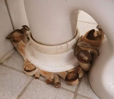 Leckere Pilze wachen Zuhause lustig