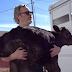Ο Τζόκερ έσωσε μια αγελάδα και το μικρό της από ένα σφαγείο