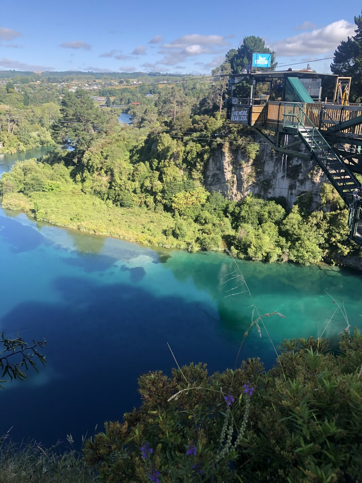 taupo bungy