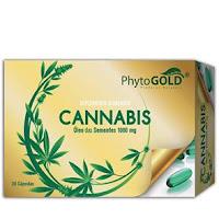 Cannabis - PhytoGold