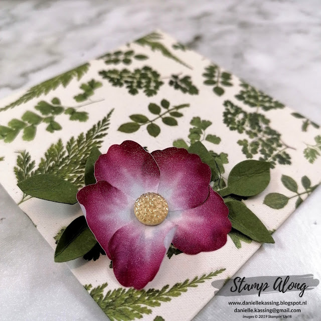Stampin' Up! Pressed Petals Specialty DSP