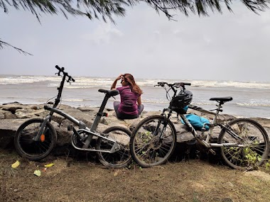 Seven benefits of cycling beyond fitness