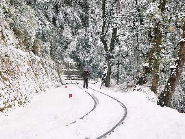Car Rental in Shimla, Kinnaur Tour Package