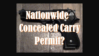 """photo of gun with text """"nationwide concealed carry permit?"""""""