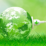 Green Revolution in India: Advantages and Disadvantages