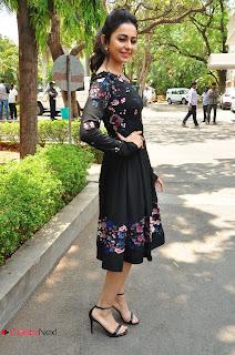 Actress Rakul Preet Singh Pictures in Short Dress at Sarrainodu Press Meet  0125