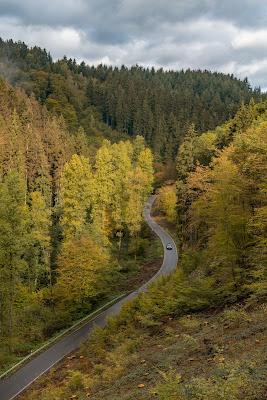 Wäller Tour Iserbachschleife | Wandern im Westerwald 10