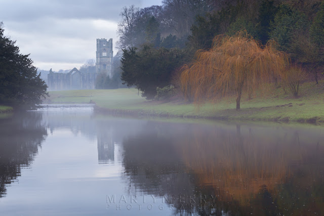 Tree reflection in the misty lake and the Cistercian ruins of Fountains Abbey in the background