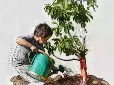 In my brother's motherless child Bolai, plants were the dominant element.