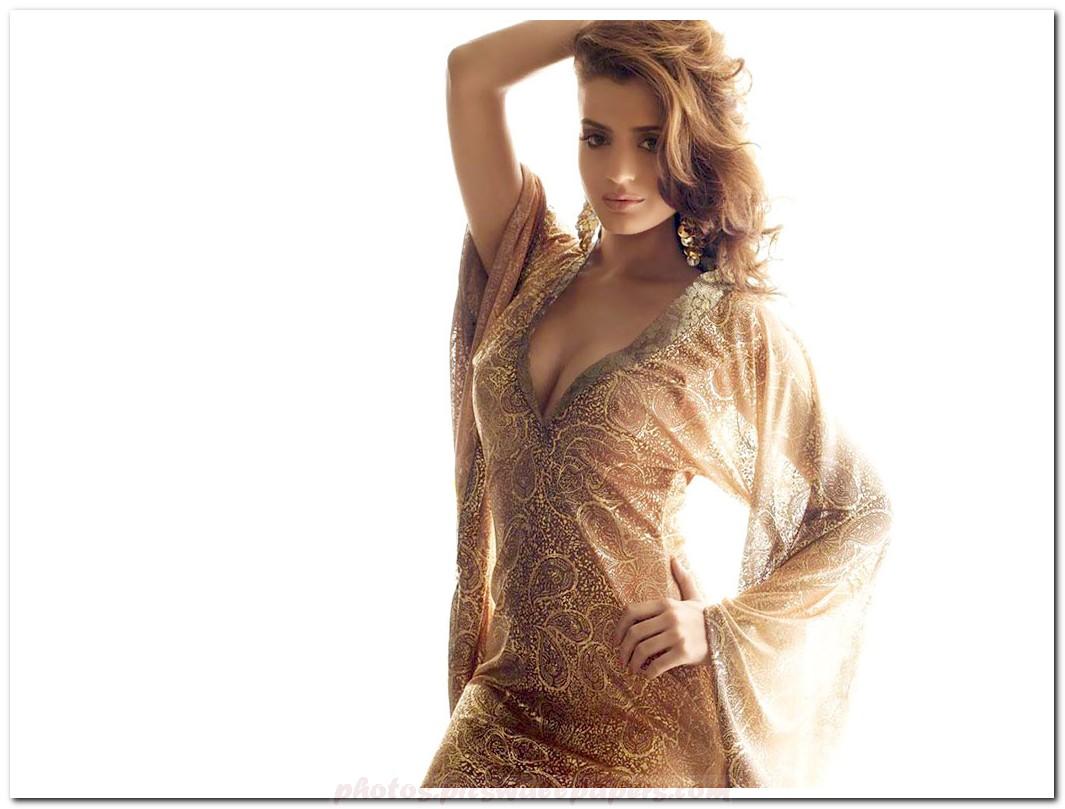 Amisha Patel Sexy-8335
