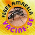 SUS vai oferecer vacina contra febre amarela no Nordeste e ampliar faixa etária para imunização contra gripe