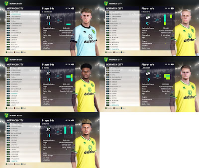 PES 2021 Facepack Norwich City by VN HUY BUI