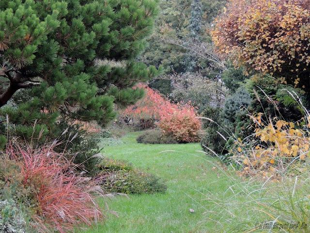 christian Bessard jardin arbres en automne