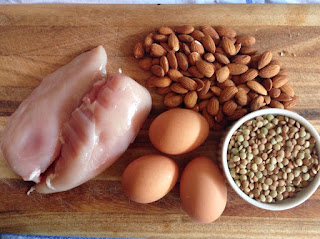 Makanan Banyak Protein
