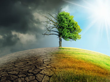 On the left is a a dead tree, dried-out earth and stormy skies, on the right is a healthy tree with  grass under a sunny sky.