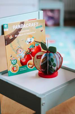 kit activité pandacraft