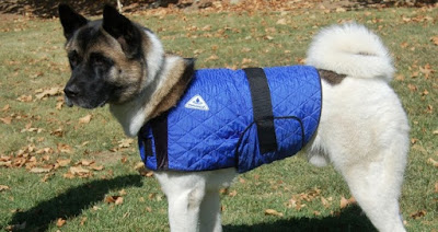 HyperKewl-Cool-Coat-dog-cooling-coat
