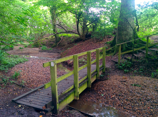 The footbridge in Bayford Wood at point 8 in the walk Image by Hertfordshire Walker released under Creative Commons BY-NC-SA 4.0