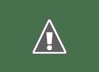 Dibujo que representa los procesos cognitivos