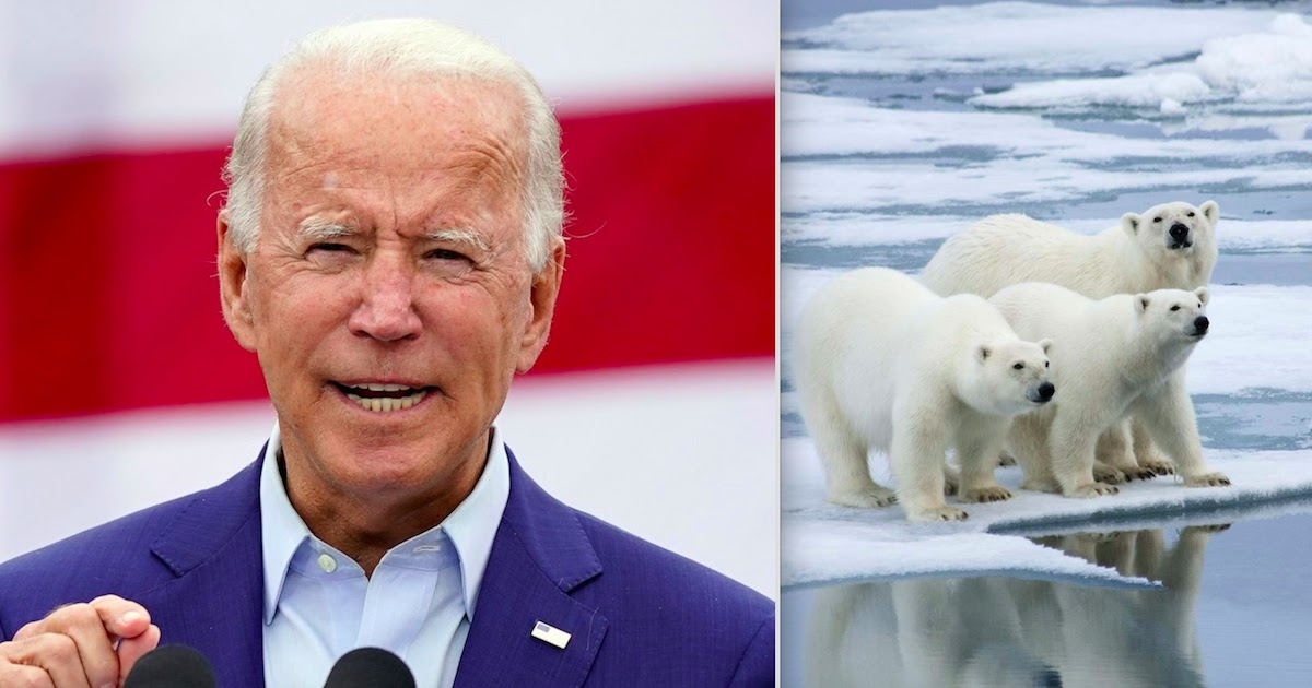 Joe Biden Bars All Oil And Gas Drilling In Arctic National Wildlife Refuge