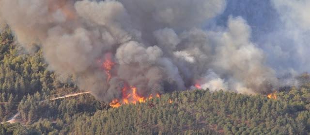 ISEP integra projeto para prevenção de incêndios