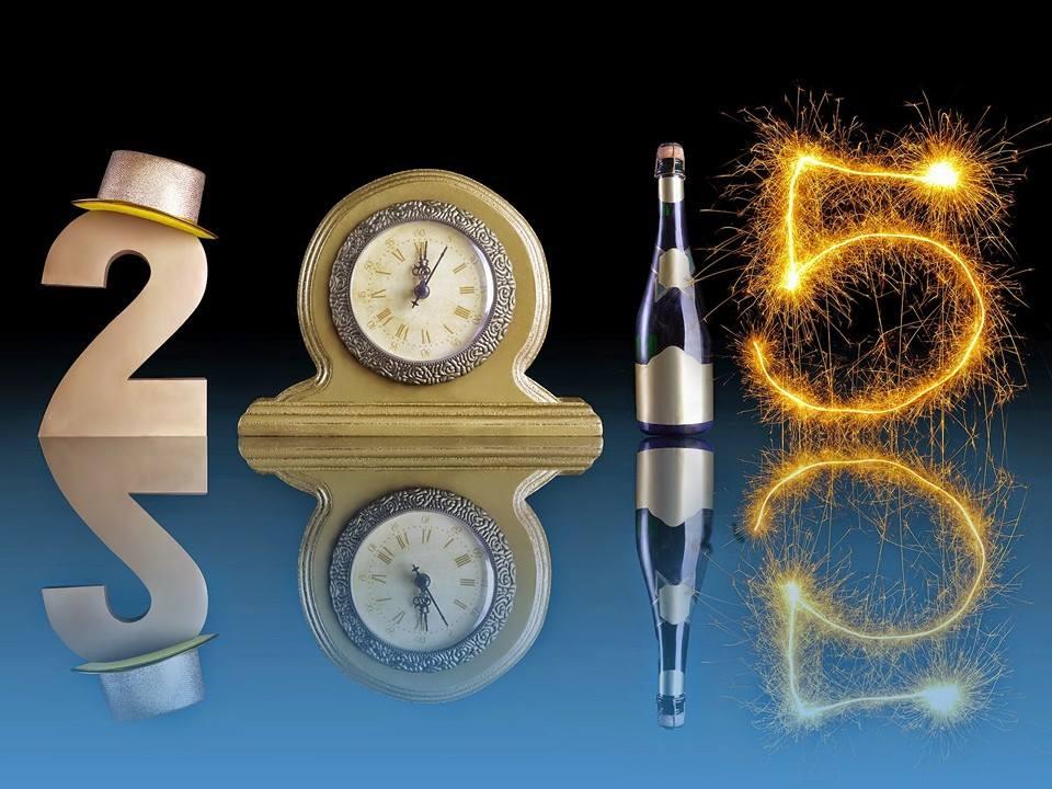 Pregled 2014.g. i planovi za 2015.g.