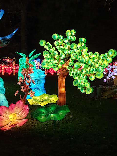 Festival Lanternes Gaillac Blog Hélidée Arbre