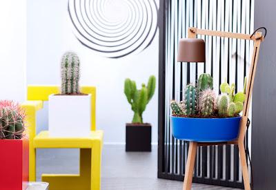 cactus anthemion