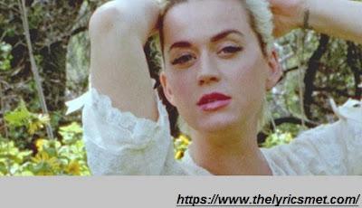 Daisies Song Lyrics   Katy Perry