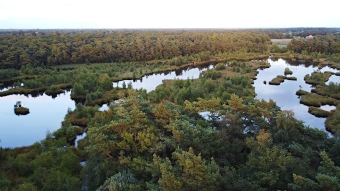 Mijn favoriete stukje Zuidoost Friesland: het natuurgebied de Diakonievene