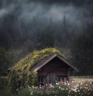 صور طبيعية , أجمل الصور الطبيعية والمناظر الخلابة , خلفيات طبيعيه جميلة جداً