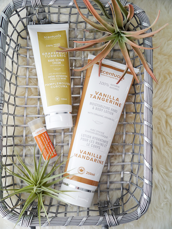 Scentuals Vanilla Tangerine Hand & Body Lotion, Vanilla Tangerine Lip Conditioner, Grapefruit Turmeric Hand Repair Cream
