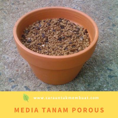 Media Tanam Porous