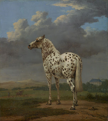 Genetic degradation can be seen in many places, but it has been demonstrated in horses as well. This is further evidence against evolution and in favor of special creation.