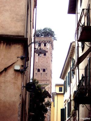 La Torre Guinigi con i suoi alberi in cima è uno dei simboli di Lucca