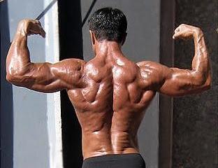 Como desarrollar una espalda perfecta