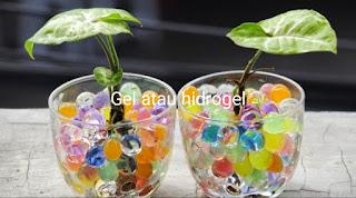 Gel atau hidrogel