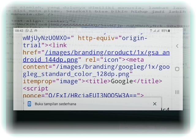 Mudah Banget! Cara View Source Code Web di Android