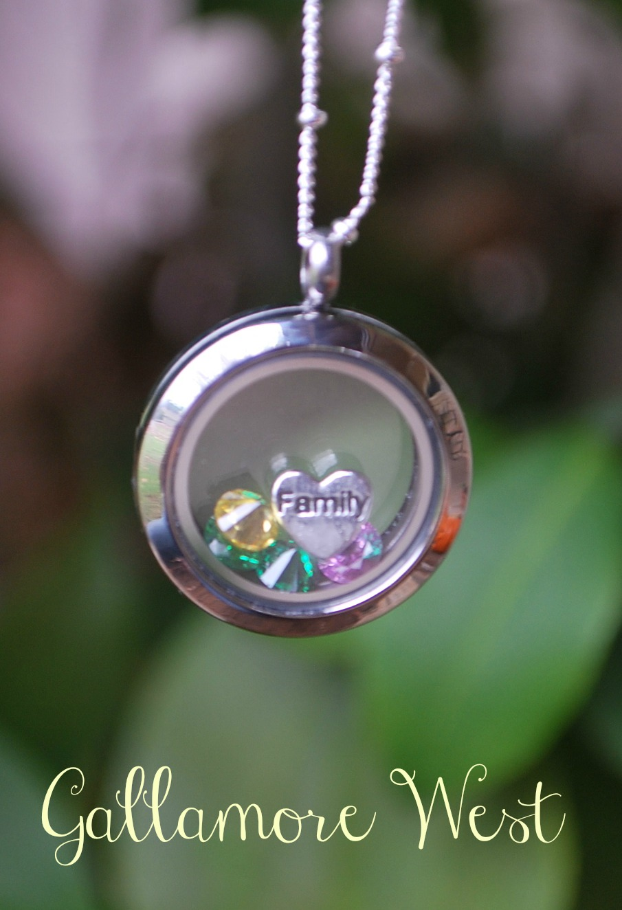 gallamore west: Origami Owl Giveaway!