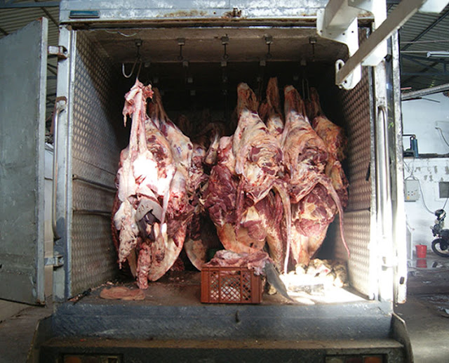 Peligroso, pero lucrativo: el negocio de la carne venezolana en Colombia