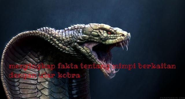 fakta seputar arti mimpi ular kobra