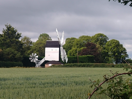 The windmill viewed from Ardeley footpath 49 Image by Hertfordshire Walker released via Creative Commons BY-NC-SA 4.0