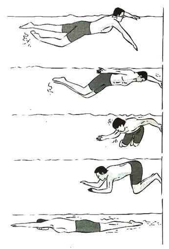 Gerakan Kaki Renang Gaya Punggung Dimulai Dari : gerakan, renang, punggung, dimulai, Teknik, Gerakan, Renang, Punggung,, Koordinasi, Kaki,, Tangan,, Pernapasan